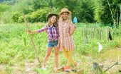 Growing Vegetables. Hope For Nice Harvest. Girls Planting Plants. Rustic Children Working In Garden. poster