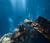 picture of bottomless  - Underwater shoot of a ship wreck - JPG