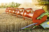 Combine Harvester Harvesting Ripe Golden Wheat On The Field. The Image Of The Agricultural Industry poster