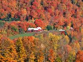 New England Farm in Autumn