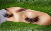 Beautiful Woman With Long Lashes On The Background Of A Leaf Of Monstera With Water Droplets.. Eyela poster