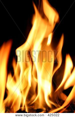 Fogo!