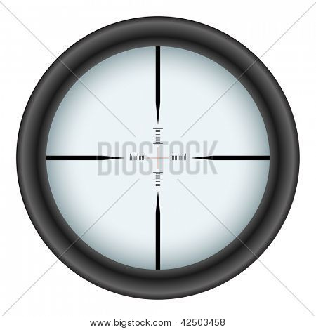 Rifle scope crosshair isolated on white background.
