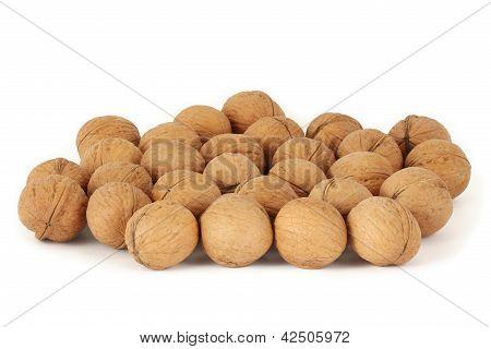Many walnuts
