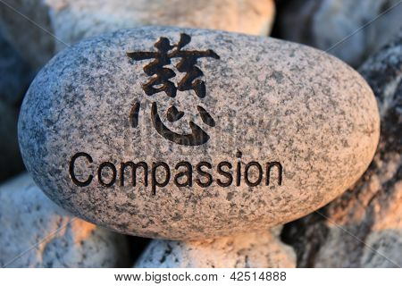 Mitgefühl