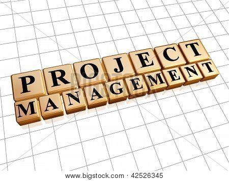 Project Management In Golden Cubes