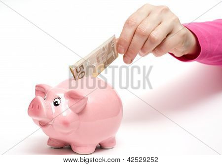 Pink Piggy Bank With Bank Note