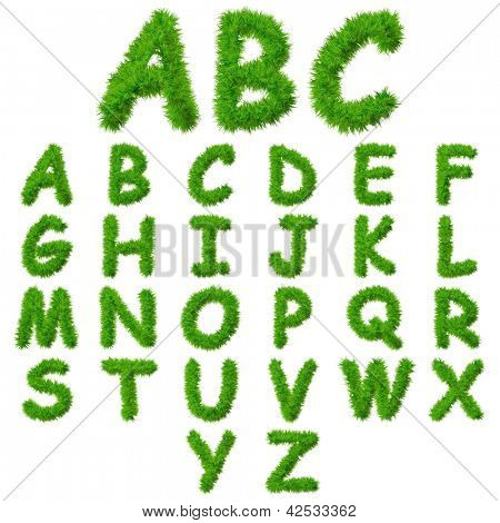 A concept or conceptual set or collection of green grass,eco font isolated on white background