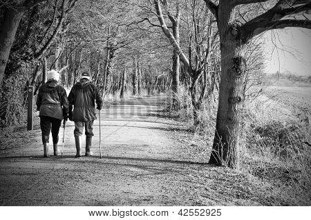 Senior Couple Walking Through The Woods