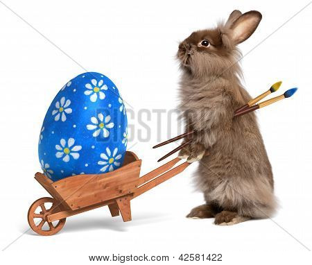 Funny Easter Bunny Rabbit With A Wheelbarrow And A Blue Easter Egg