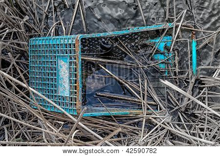 Discarded Shopping Cart In Swamp