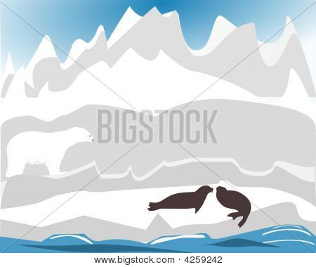 Polar Bear Hunting For Seal
