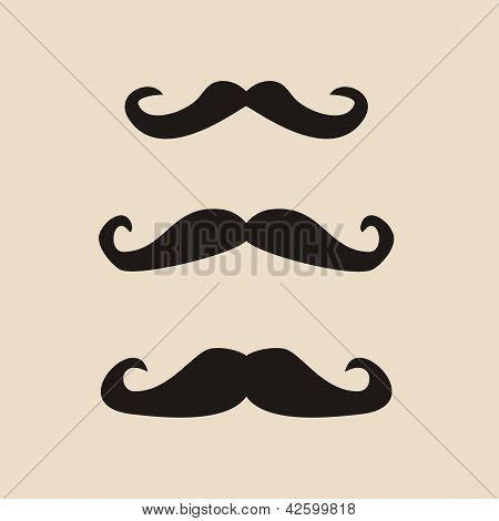Vector set of curly vintage gentleman mustaches. Retro hipsters icon or symbol. Natural moustache