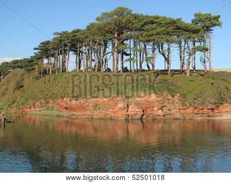 River Inlet Tree Seascape