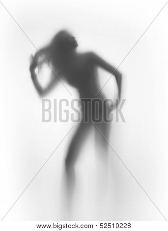Sexy woman silhouette, with long hair