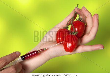 Genetic Vegetables Experiment