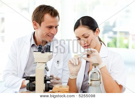 Scientists Studying A Slide Under A Microscope