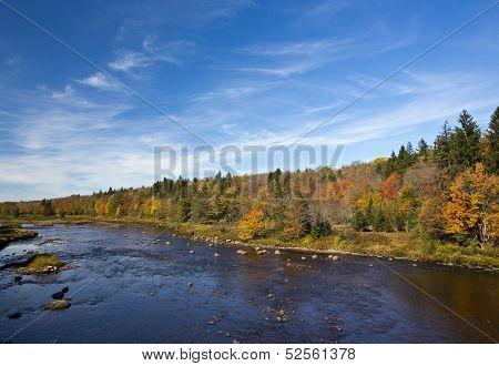 Autumn Pastoral Landscape