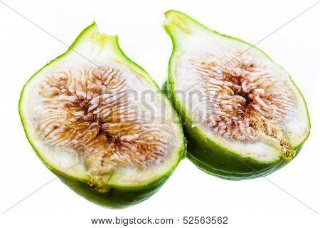 Fig Macro