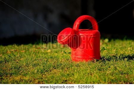 The Sprinkler Toy