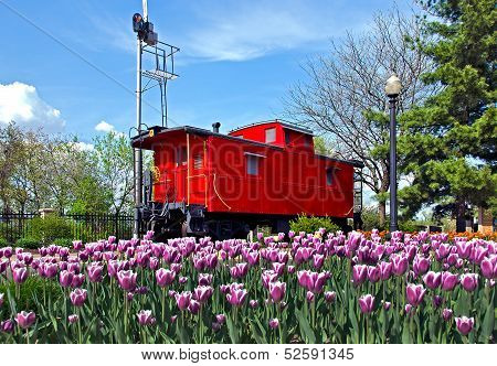 bright red caboose with tulips