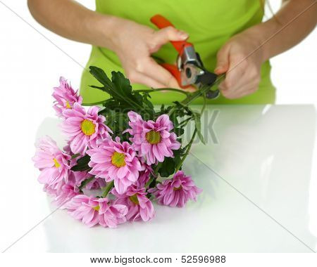 Florist shears cuts flowers isolated on white