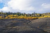 pic of sagebrush  - Blazing fall colors adorn the mountains aspens and sagebrush steppe of the Wyoming Rocky Mountains - JPG