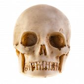 stock photo of dread head  - a tiny and dirty skull model made of stone - JPG