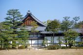 picture of shogun  - The Ninomaru Palace was the seat of the Shogun in Kyoto when he visited the Emperor - JPG
