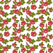 foto of wild-brier  - Seamless floral background with wild rose - JPG