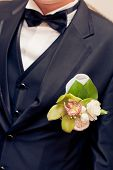 image of boutonniere  - green orchid wedding boutonniere on suit of groom - JPG