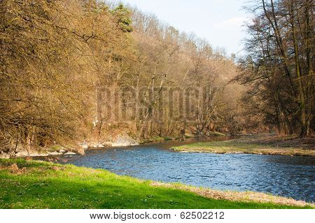 Springy View Of River And Wood
