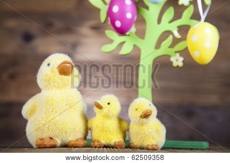 Little easter duck
