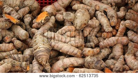 Fresh Turmeric Roots