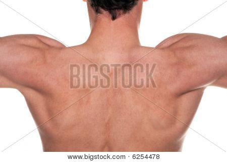 Mans Back