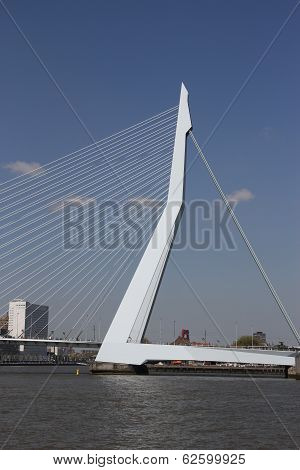 Rotterdam, The Netherlands - June 15th, 2013: Erasmusbridge against blue sky