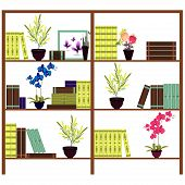 Simple bookshelves with books, flowers, pots