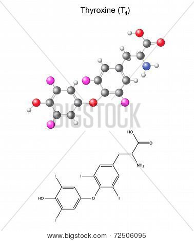 Structural Chemical Formula And Model Of Thyroxine - Thyroid Hormone