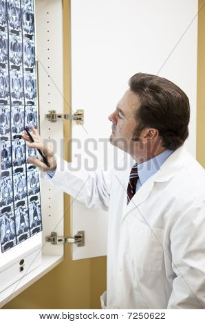Doctor Examines Cat Scan