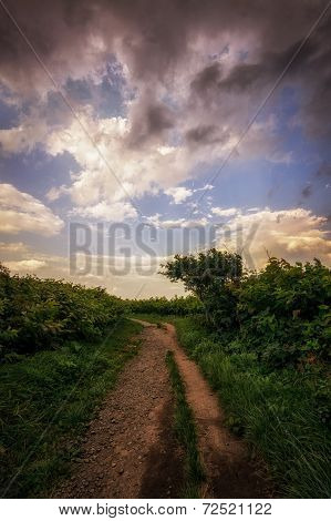Small pathway