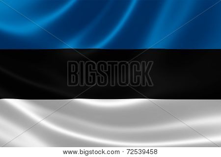 Flag Of The Republic Of Estonia