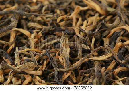 Famous Chinese Dian Hong Yunnan Tea