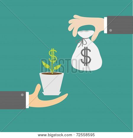 Hands With Money Tree And Moneybag