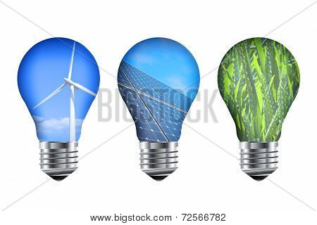 Energy Light Bulbs