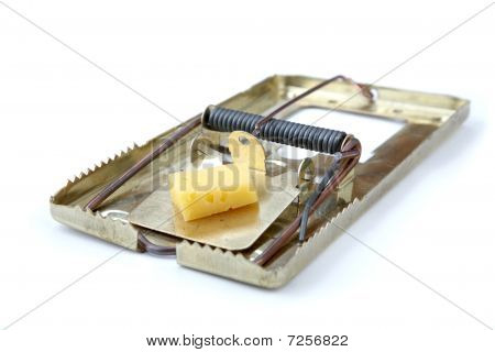 Metallic Mousetrap With Cheese