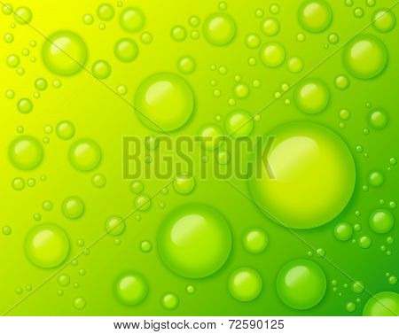 Water Drops on Green Background Abstract