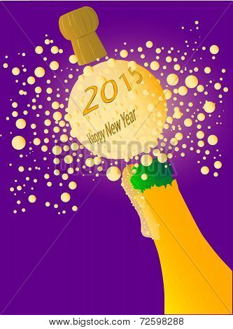 Bubbly New Year 2015