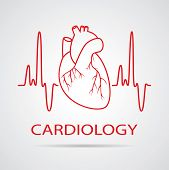 stock photo of cardiology  - vector human heart medical symbol of cardiology - JPG