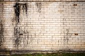 picture of tar  - Old weathered wall of bricks with a splash of black tar - JPG