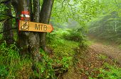 picture of bike path  - Hiking guide mark and bike route signboard on beech three pointing bike path through foggy forest - JPG